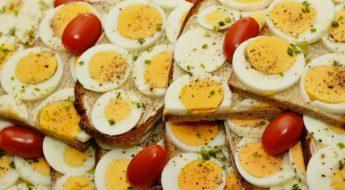 Uova e nutrizione nel ciclismo Moretti Bassano