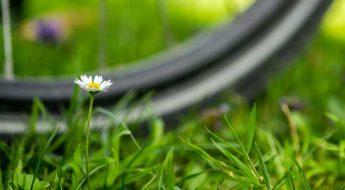 Primavera, bicicletta e manutenzione. Moretti Bassano