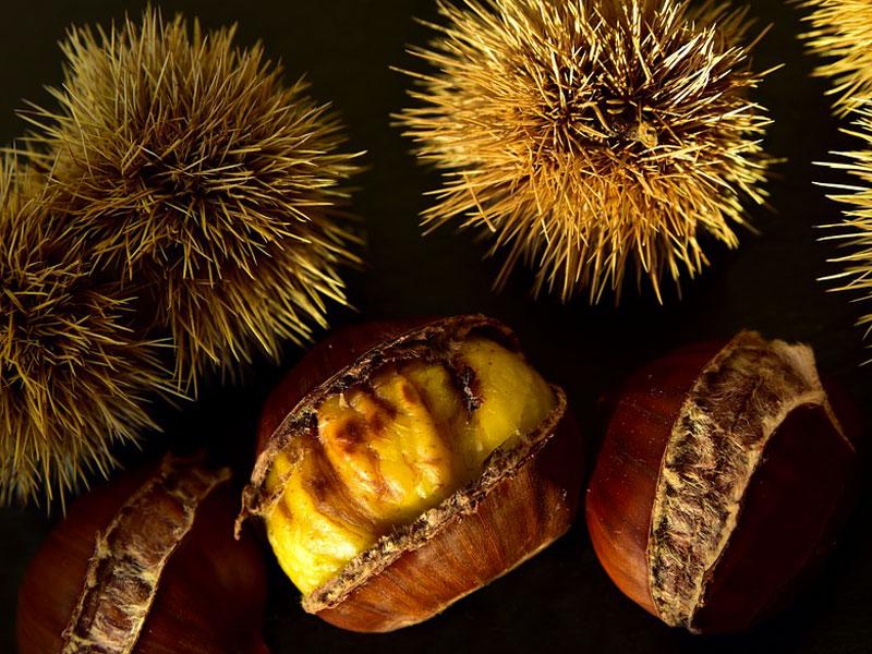 Autunno e castagne: i benefici della frutta di stagione. Moretti Bassano.