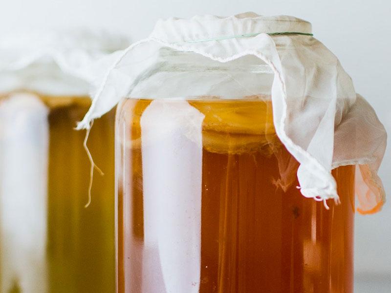 Kombucha: dallo scoby al te fermentato. Moretti Bassano.